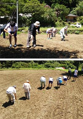 そばの収穫祭 第一回「そばの種まき」